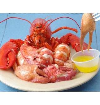 Fresh Lobster Meat
